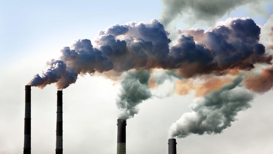 Jak zadbać o zdrowe powietrze?